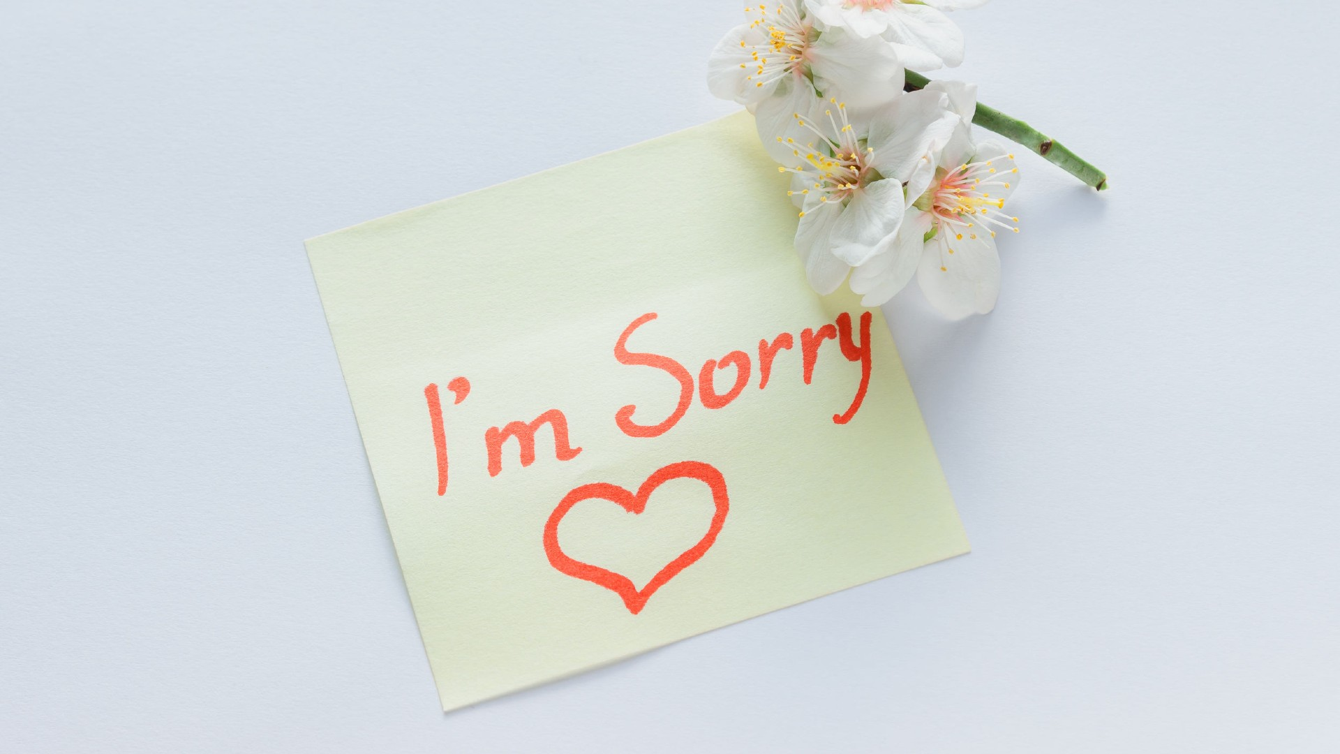How To Apologise Without Looking Like A Tool