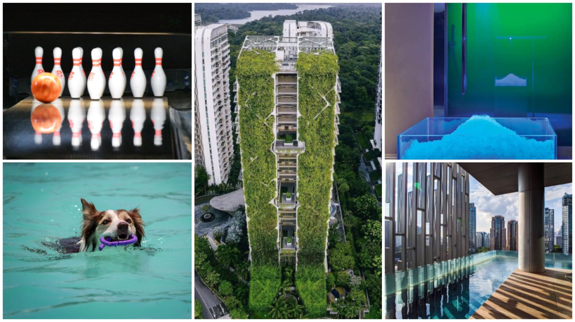 Singapore Condos With Unusual Facilities: Pet Pool, Boxing Ring, Bowling Alley